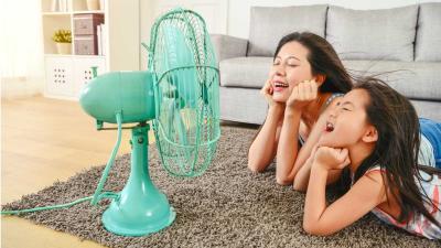 ¿Cómo elegir el ventilador ideal para el hogar?